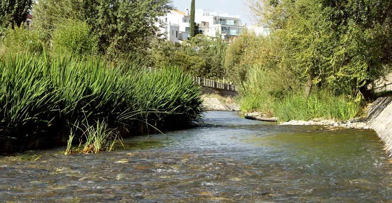 Darro River Granada